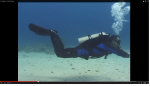 scuba-diving-trim